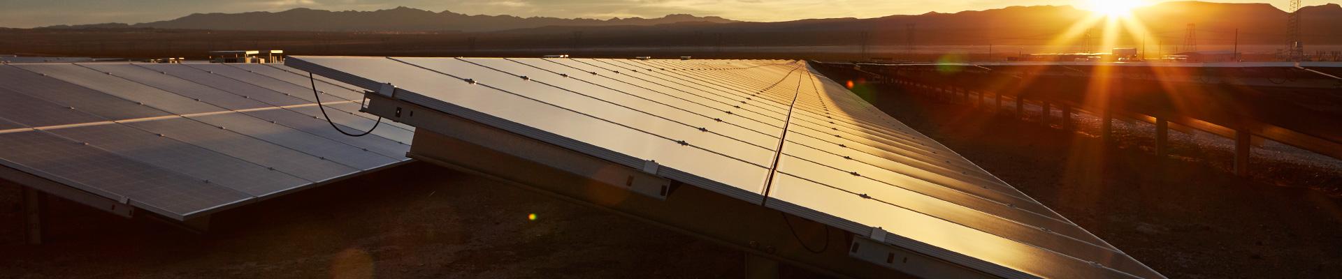 цена солнечные панели Trina Solar