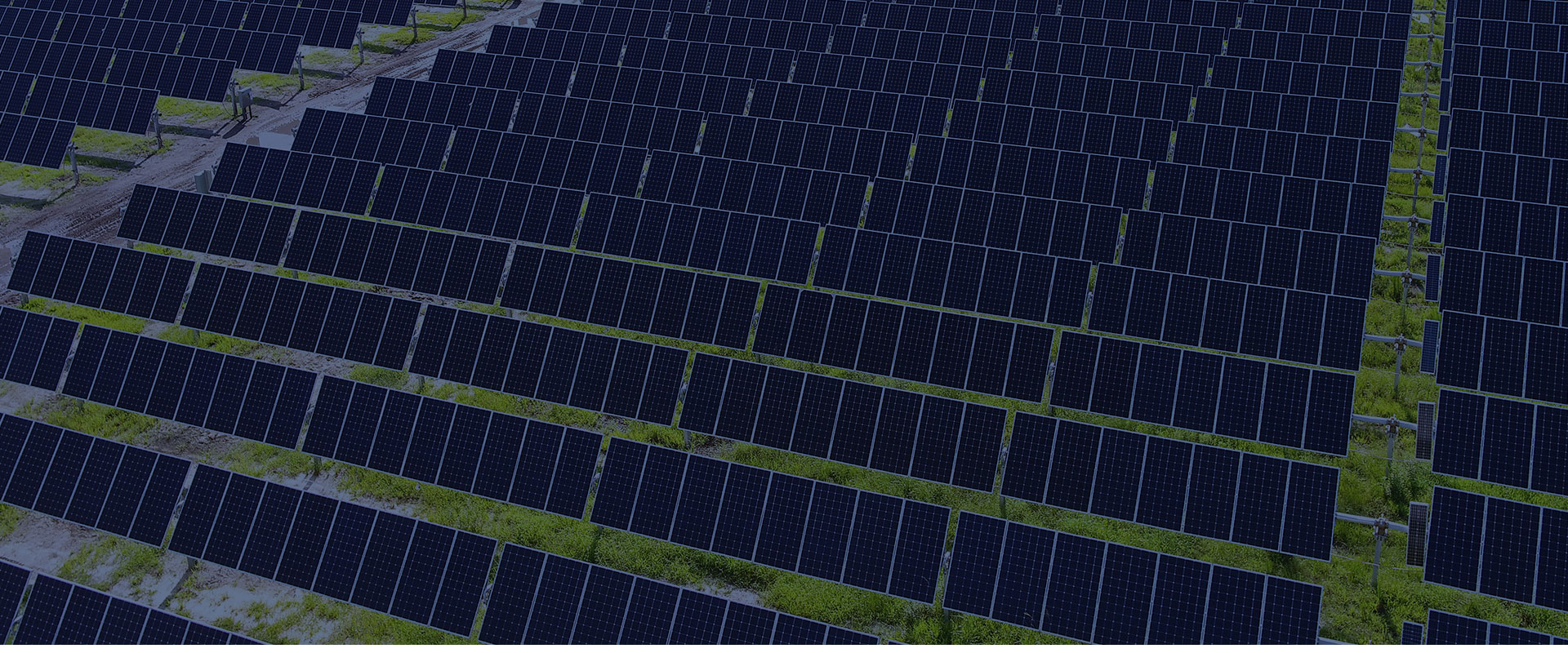 Trackers Vanguard de Trina Solar reciben la certificación europea de calidad IEC
