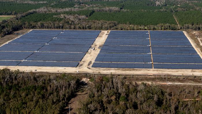 Camilla Utility Project